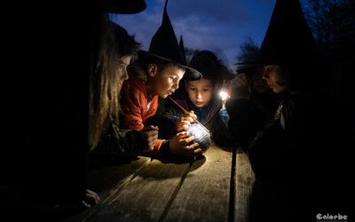 École de magie Griffsor